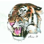Tiger Tattoo Designs Volume-1