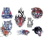 Tiger Tattoo Designs Volume-4
